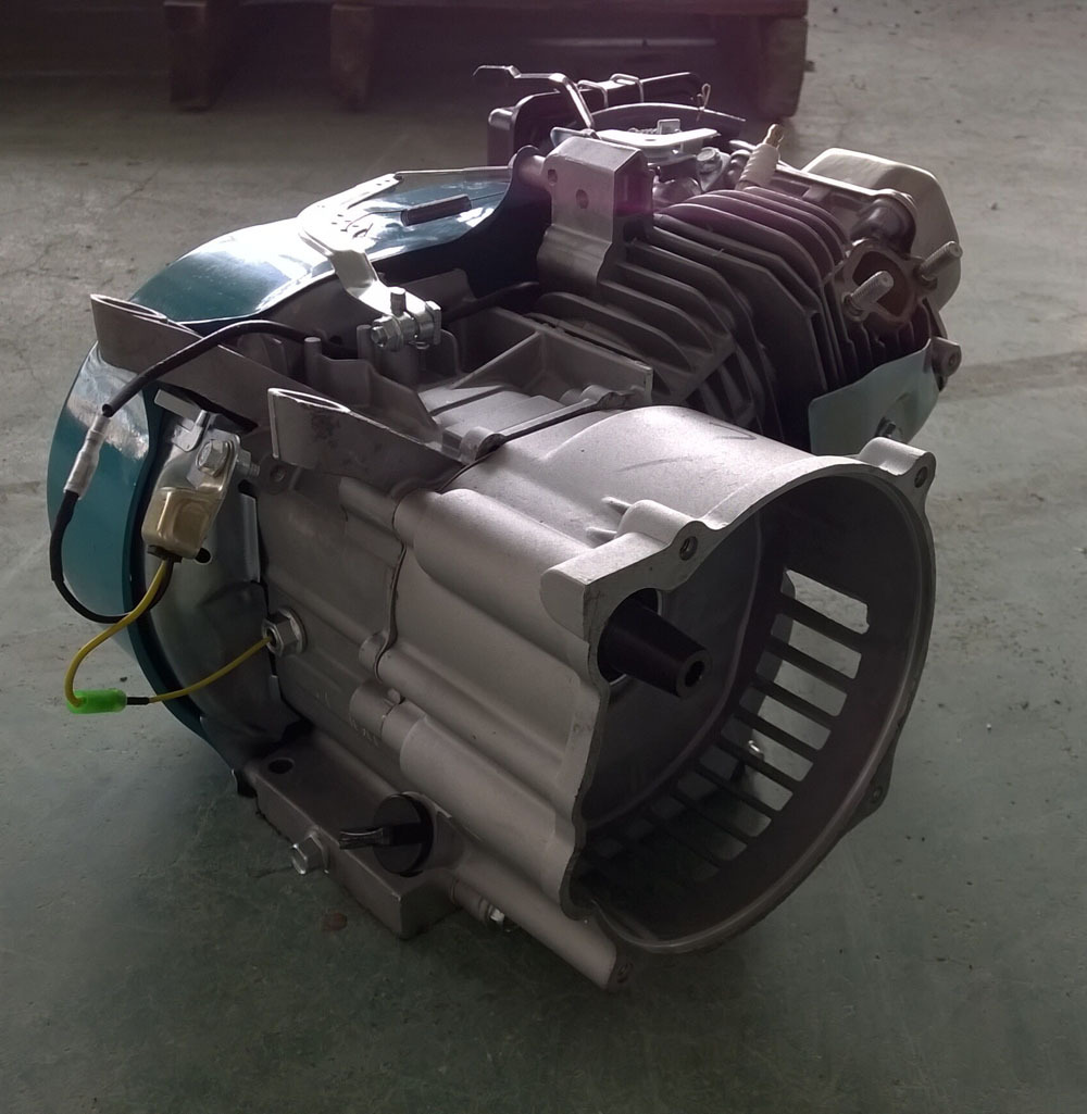 Bison China Taizhou Gasoline Outboard Engine In