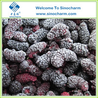 Bulk Frozen Fresh Mulberry