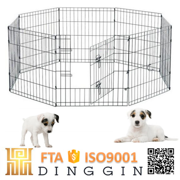 Chain link puppies dog fence