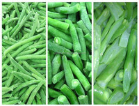 Good quality IQF frozen cut green beans