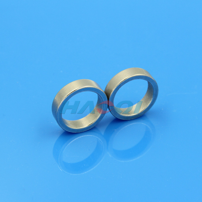 NdFeB Neo permanent ring heavy industrial magnets
