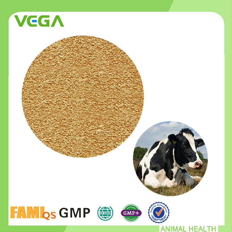 Functional Customized Personalized Animal Feed