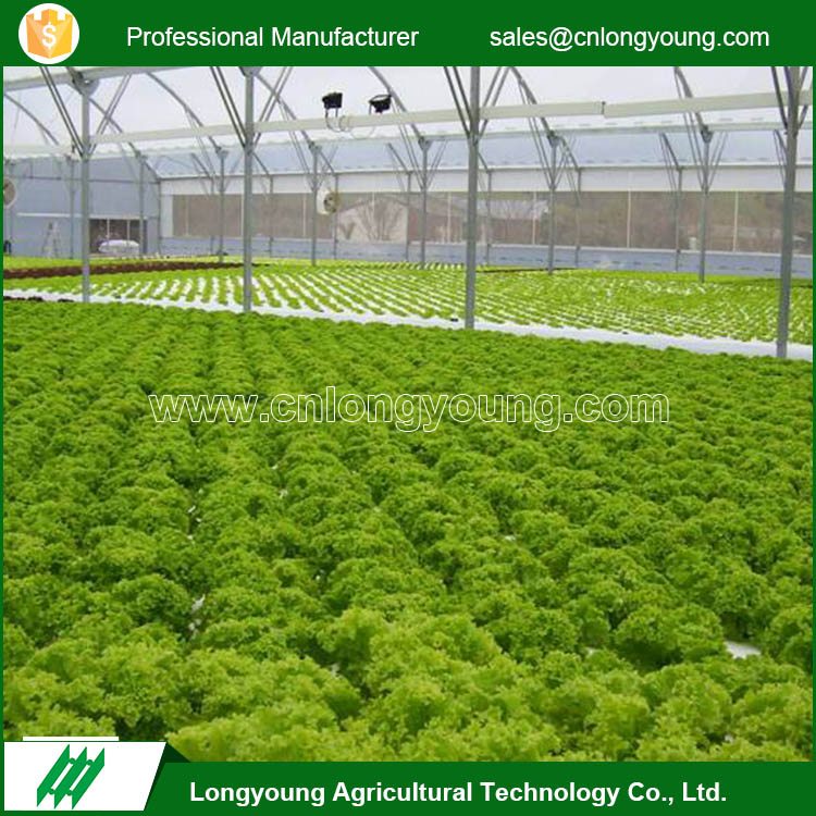 Hot selling easy installation hydroponic greenhouse systems