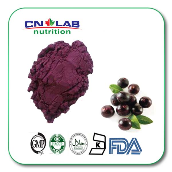 Acai Berry Extract Powder/Acai Berry Extract Organic with Powder
