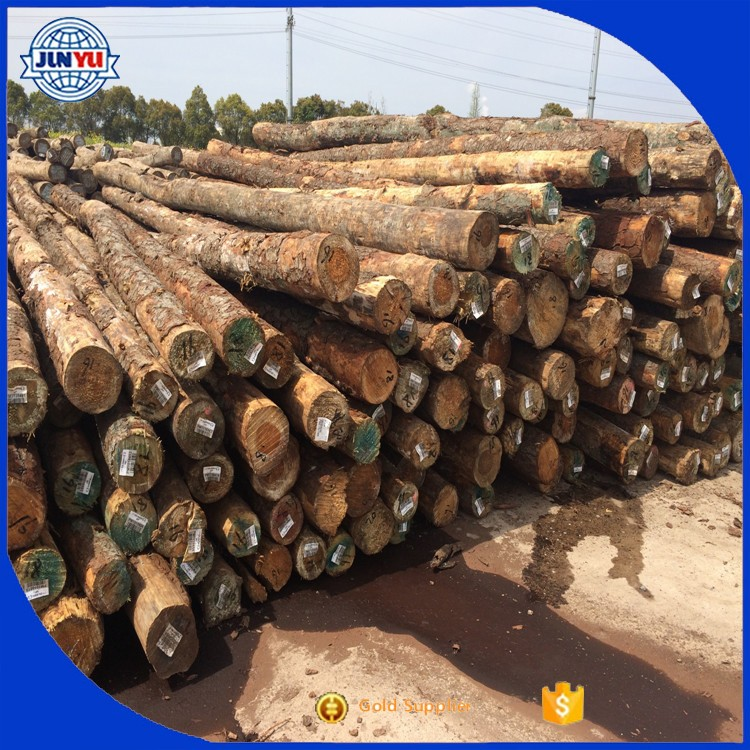 south yellow pine wood price