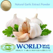 Hot Selling 100% Natural Organic Garlic Powder Allicin 25%,Garlic Extract Powder/Garlic Extract