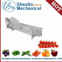 New Style egetable and fruit bubble washer/mushroom washer with best service