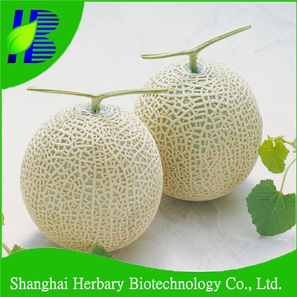 High sprouting rate hami melon seeds