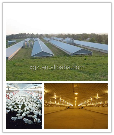 Prefabricated Broiler Poultry poultry farming industrial chicken house