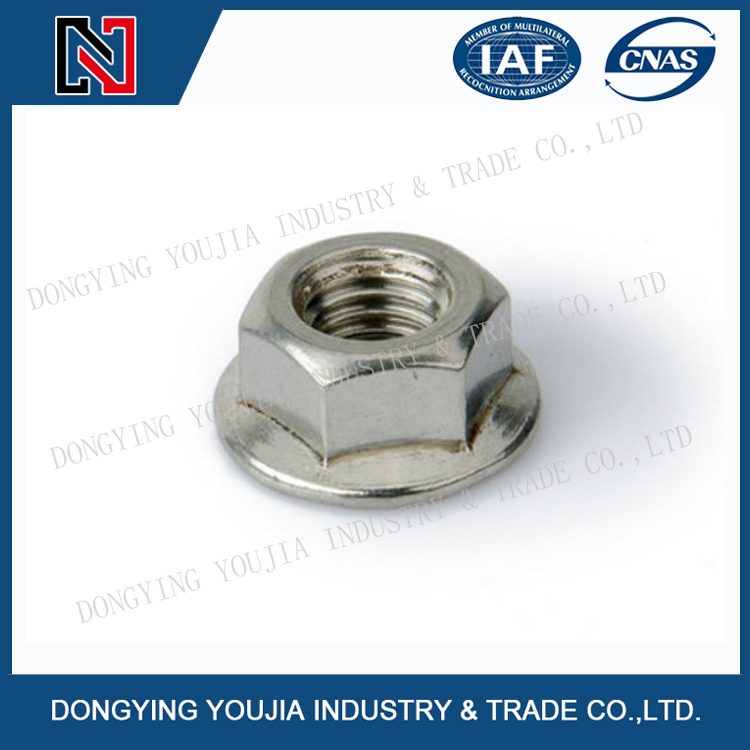 DIN6923 Stainless Steel Hexagon nut with flange