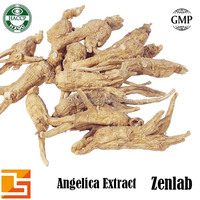 hot sell products for high quality angelica root extract