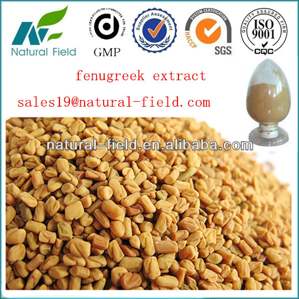 top quality fenugreek extract and seeds