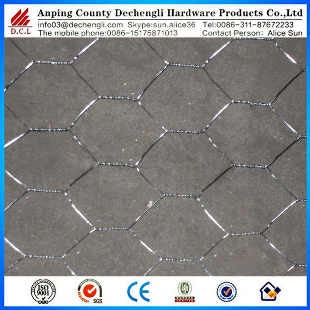 fish trap Hexagonal Wire Mesh/hexagonal retaining wall wire netting