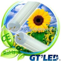 Dimmable Flash LED Bulb light