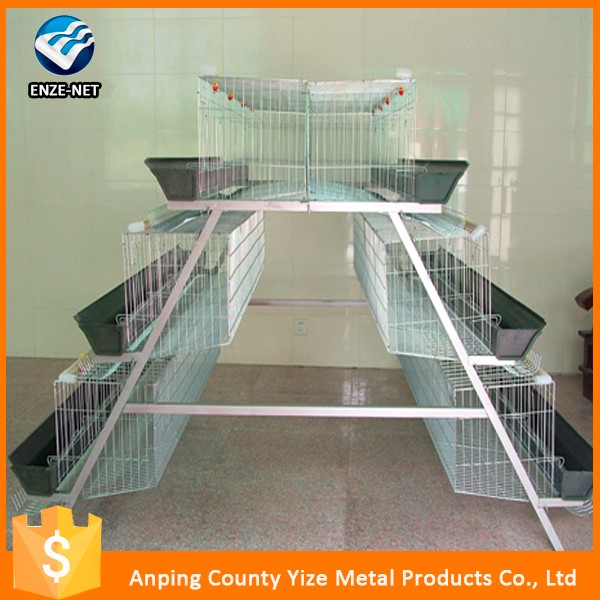 Poultry Cage Feeding System/120 Birds Design Layer Chicken Cages Export to East , West and South Africa