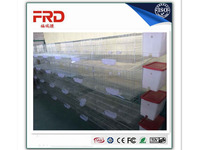 FRD-Fully automatic steel wire mesh chicken cage / Baby chick cage / chicken layer cage