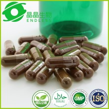 Health food ganoderma lucidum spore powder softgel diabetic food products