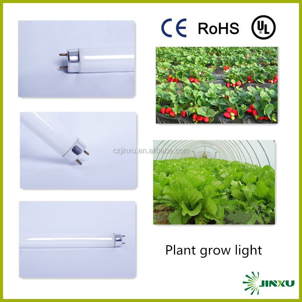 36W grow lamp high quality and low price 2700k plant induction grow lamp
