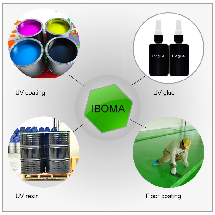Solvents Acrylic Monomer IBOMA/Isobornyl methacrylate CAS 7534-94-3