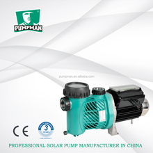 High Precision Brushless DC Swimming Pool Pump with Internal Controller Solar