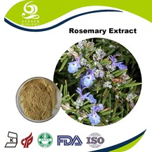 100% natural Rosemary Herbs Extract Rosmarinic Acid for Hair Growth