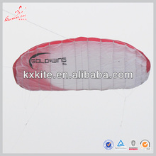 3m Wingspan Quad line Power Kite