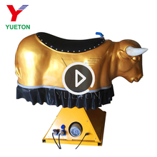 Hot Sale Used Rides Amusement Park Inflatable Mechanical Bungee Bull for Sale