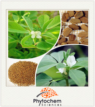 70% Fenugreek Extract Furostanol saponins for muscle stregthen