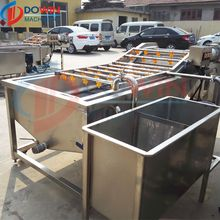 Lemon Sorting Cleaning And Drying Processing Line Washing Production Equipments