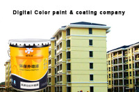 Fungus resistance good flexibility napping effect exterior wall paint coating