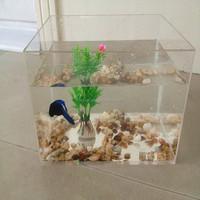 High-grade Acrylic Aquarium Tank, clear acrylic aquarium fish tank , AAT3-20-15-15