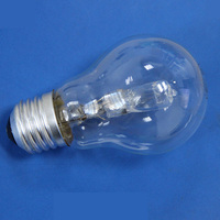 Traditional incandescent bulb halogen light