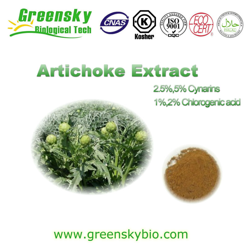 GMP Supplier Bottom Price Artichoke Extract
