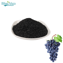 Natural dried kelp seaweed fertilizer for agriculture