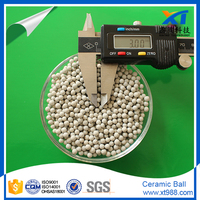 MSDS of ceramic ball for industrial catalyst support media
