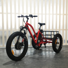 made in china electric wheelchair cargo 500W tricycle with fat tire