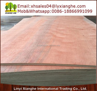 Ceiling Plywood,Red Color Plywood,Plywood Sheet