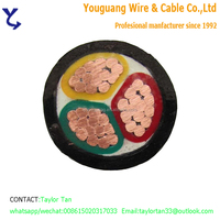 4 Core Copper Conductor XLPE Insulated PVC Sheath 16mm2 cable