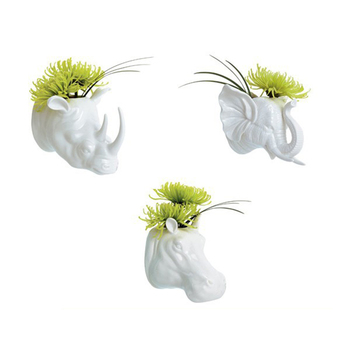 Animal Self Watering Ceramic Succlent Flower Pot