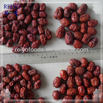 best dates fruit