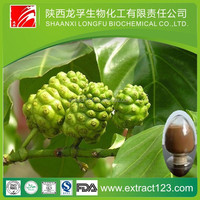 Factory supply fresh noni fruit extract