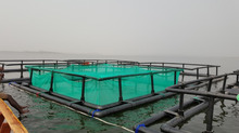 HDPE fish farming equipment for tilapia