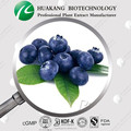 GMP Certified Manufacturer- Blueberry Extract 5%-25% Anthocyanidin powder extract 100% Natural oganic