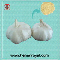 2013 China Natural Fresh Garlic