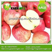 Healthy Delicious Fresh Red Chinese Fuji Apples