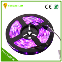 rgb/white/warm white SMD 5050 dimmable led rope light