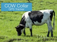rechargeable GPS Tracker with solar panel collar for Cows and big animals