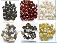 natural polished pebble stone for garden decoration