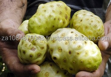 Noni fruit for sale