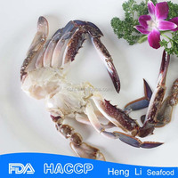 Delicious frozen swimm crab for sale